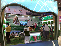 All Victory Grass at Canton Fair